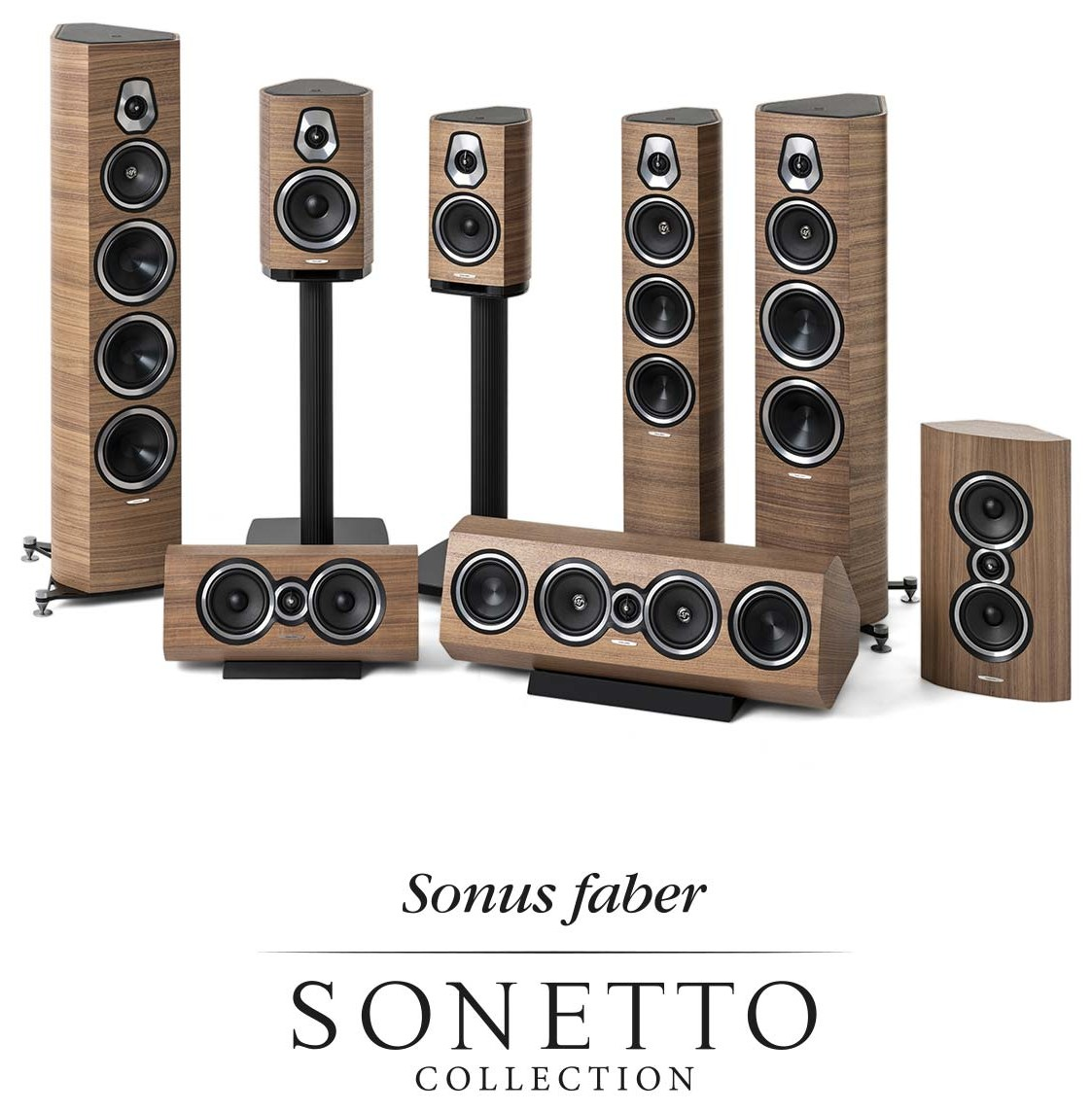 sonetto-web